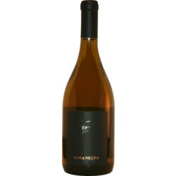 Alma Negra Blanco 2014 - Ernesto Catena Vineyards